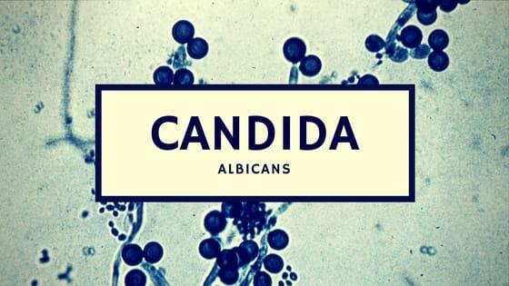 Candida infectie
